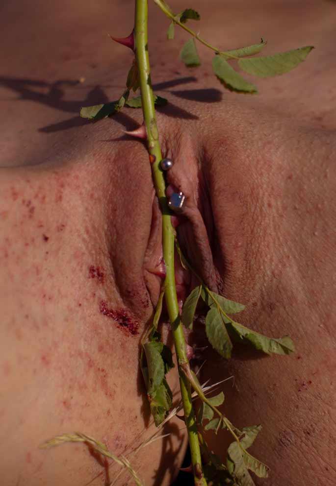 Cactus Bdsm Pussy - Sex Porn Images