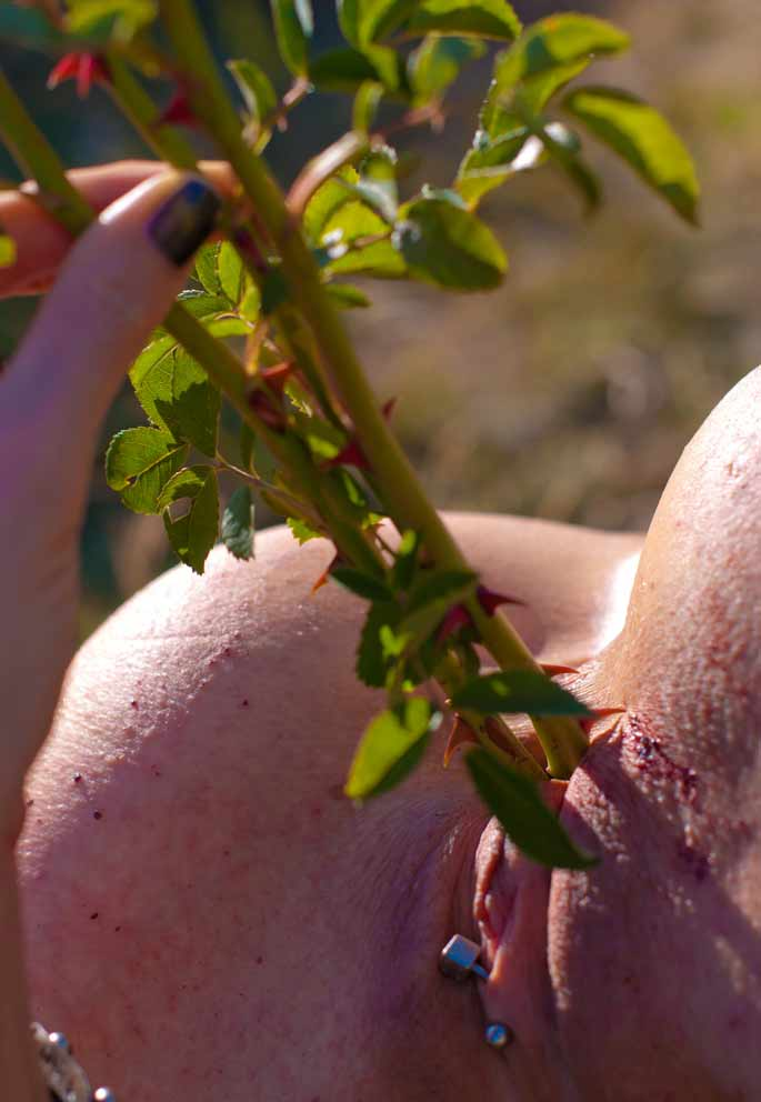 Cactus Pussy - Sex Porn Images