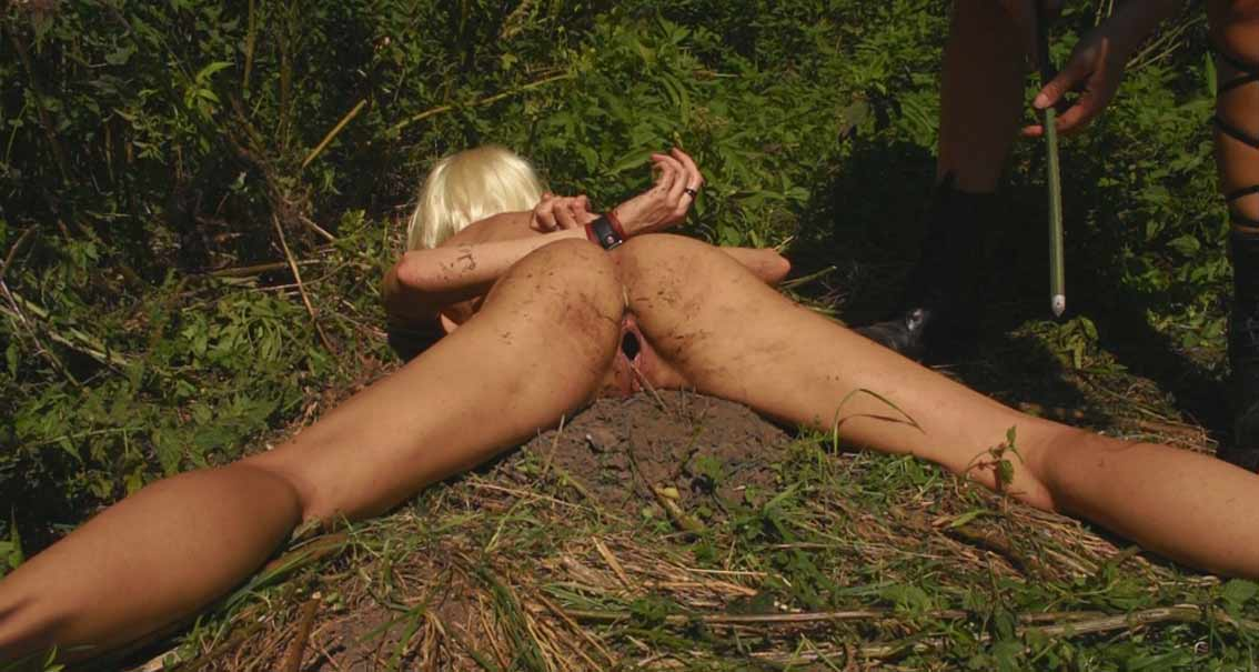 Torture by ants pic 6