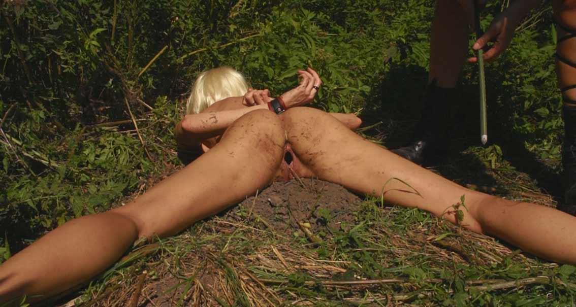 Torture by ants - BDSM torture pain pics