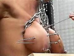 Pricking of tits
