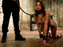 Dog slave