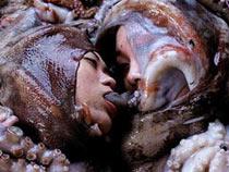 Eaten by octopus