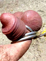 Close up to cock torture