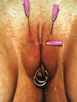 Sweet pussy torture