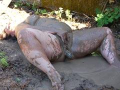 Masturbating pig in the mud