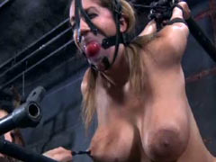 Trina Michaels tortured