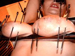 Long needles in tits