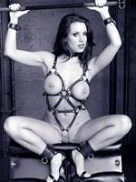 Pornstar Tessa West photos