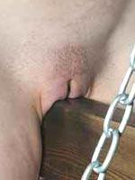 Wooden horse in BDSM