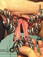 Huge genital piercing