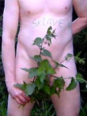 Amateur sex slaves