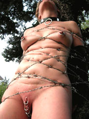 Tied with barbed wire