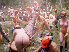Naked loggers cut trees