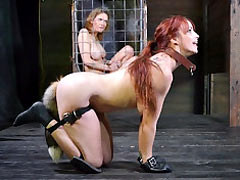 Pet girl fucked in all holes